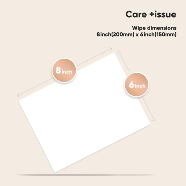Care +issue - 75% Alcohol Wipes - 20sheets/pack (20+1packs total 420sheets) - Instant Hand Cleaning and Sanitizing, Disposable Wipes - Individually Wrapped - Can be Used for Phone, Electronic, Toy - Travel Size