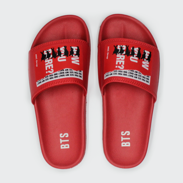 BTS Mic Drop Series Slippers - Cancer